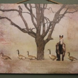Horse standing under tree as geese travel in front of it in a straight line