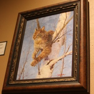 Oil painting of bobcat in a white tree by Janet Loveless